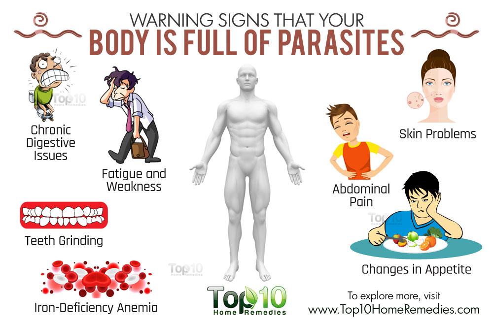 Foods That Kill Off Parasites Naturally And Effectively